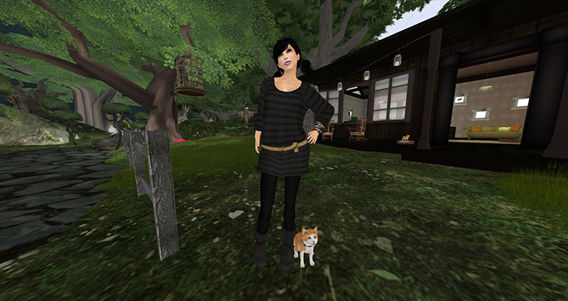 Second Life: Challenges, Issues and Cautions for Educators